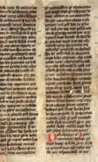 [Biblia królowej Zofii, Biblia szaroszpatacka]